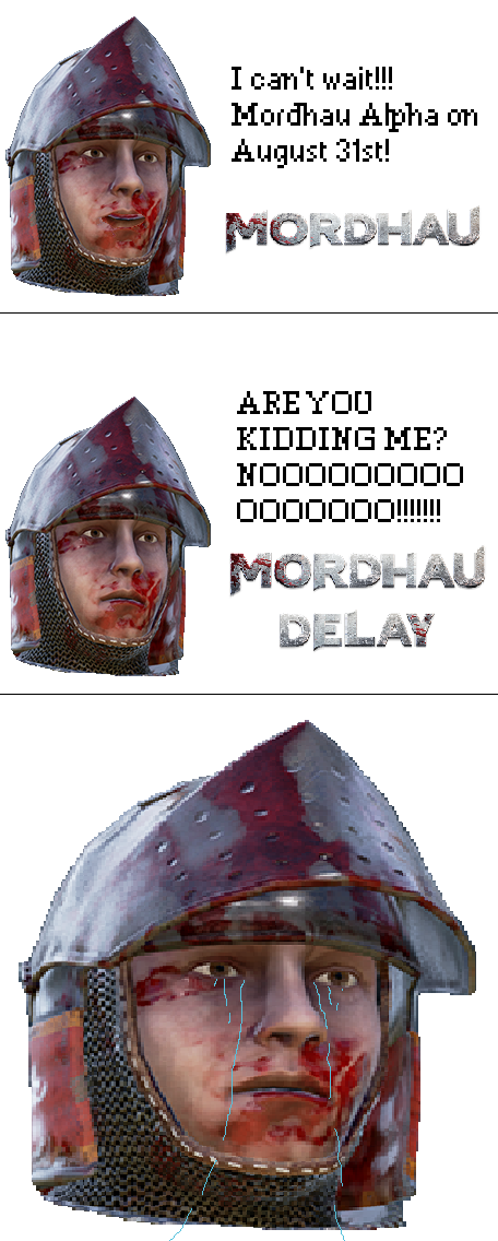 When Mordhau is delayed.png