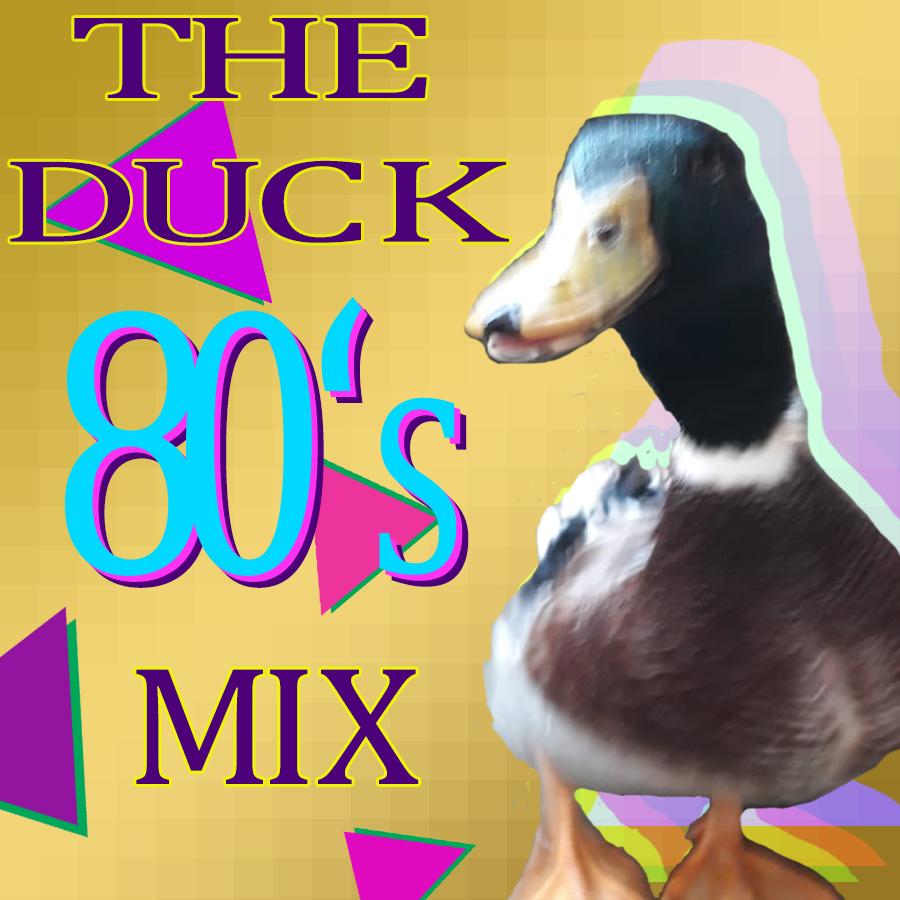 the duck mix.jpg