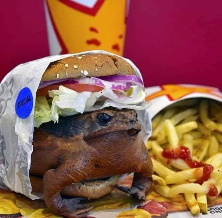 toadburger.jpg