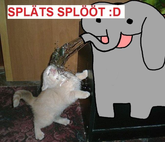 splats sploot.png