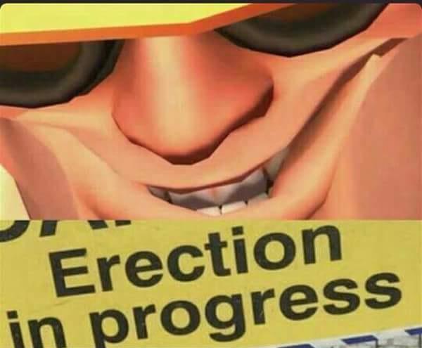 erectioninprogress.jpg