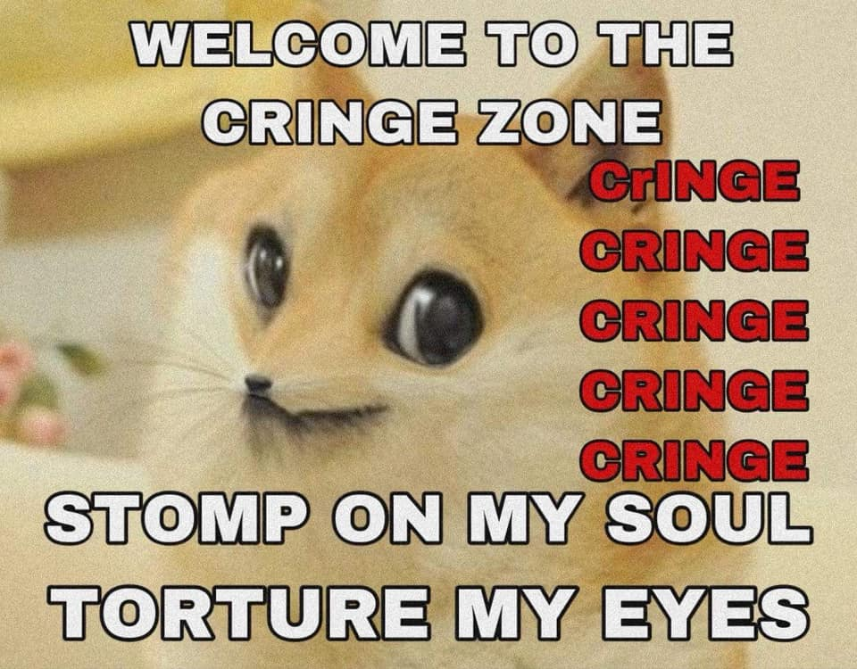 welcome to the cringe zone.jpg
