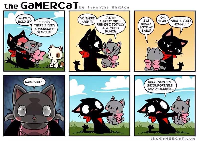 gamer cat.jpg