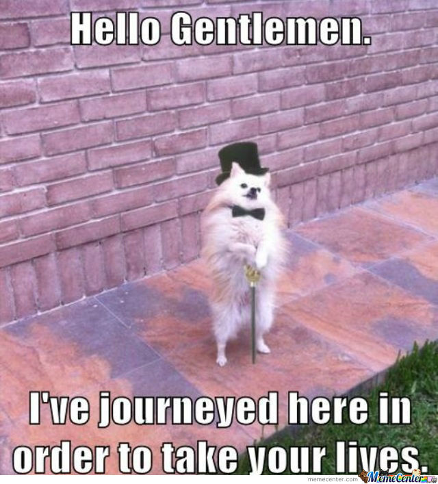 hello-gentleman_o_507471.jpg