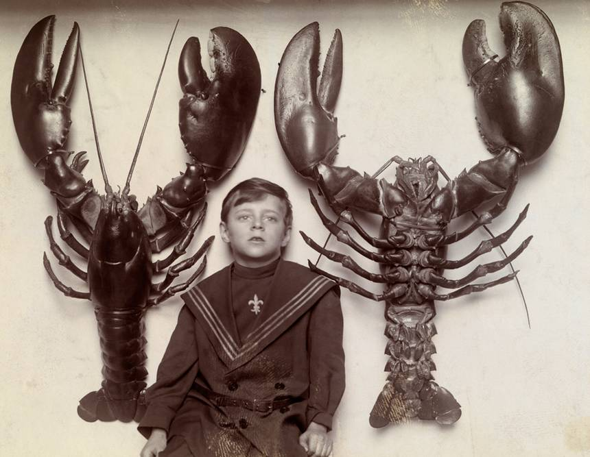 16-56-40-A_boy_between_two_mounted_lobsters_caught_off_the_New_Jersey_coast.jpg.860x0_q70_crop-scale.jpg